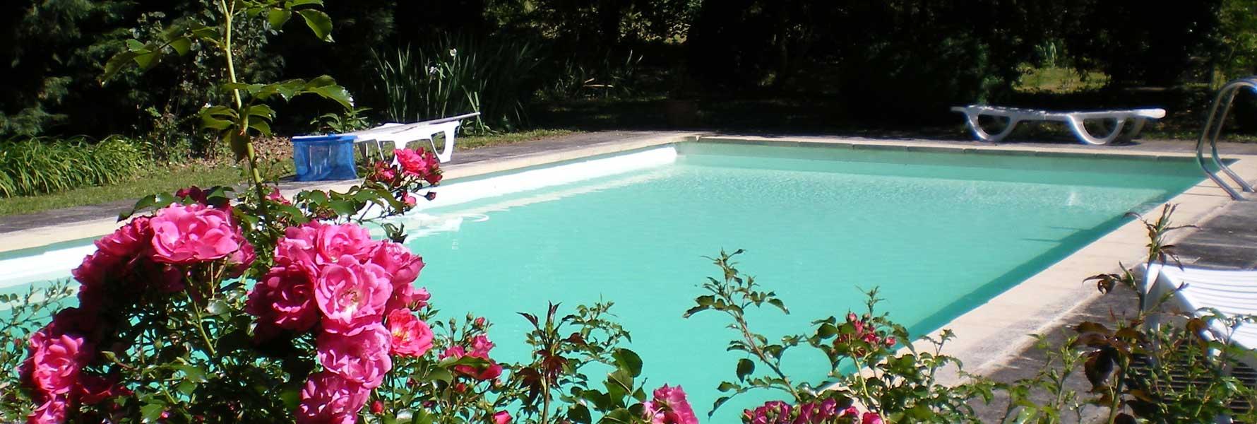chateau de Foncoussieres, la piscine