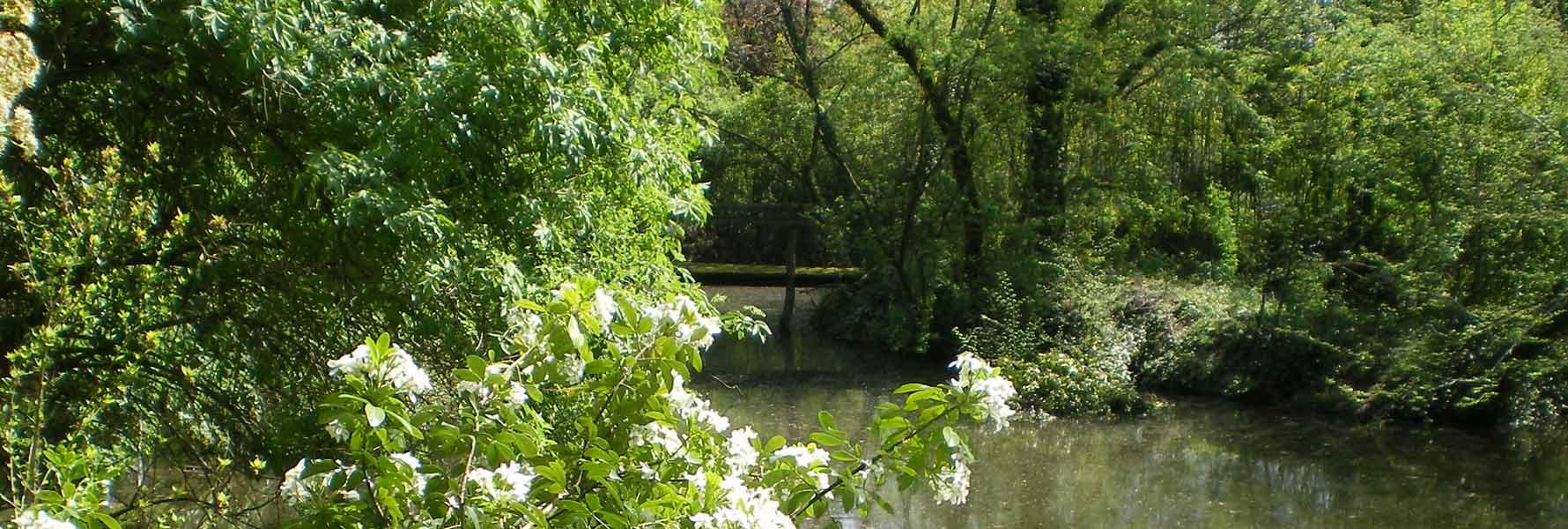 chateau de Foncoussieres, pont dans le parc